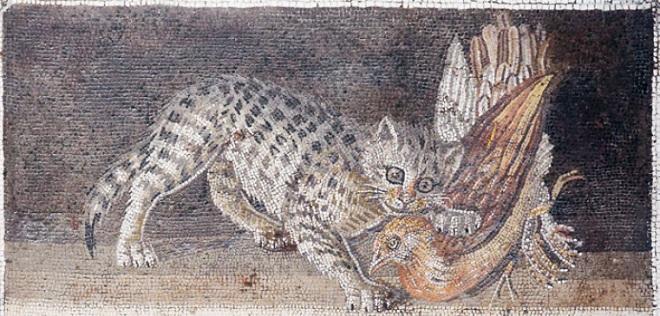 Кошка с куропаткой в пасти