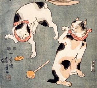 Четыре кота в разных позах