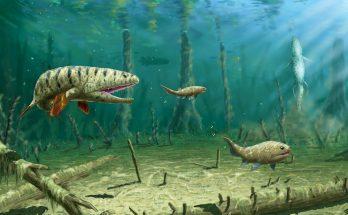 Девонские рыбы