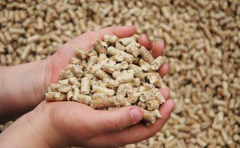 Питательные добавки к сухому корму