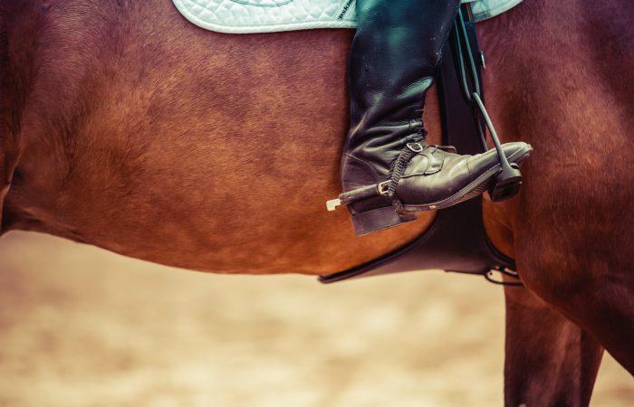 Средства управления конем