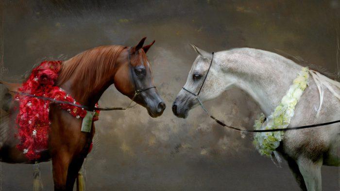 Лошади в культуре