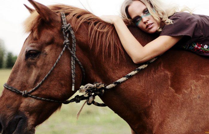 Взаимодействие человека и коня