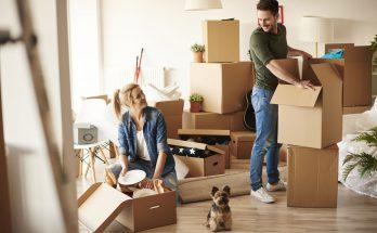 переезд собаки в новый дом