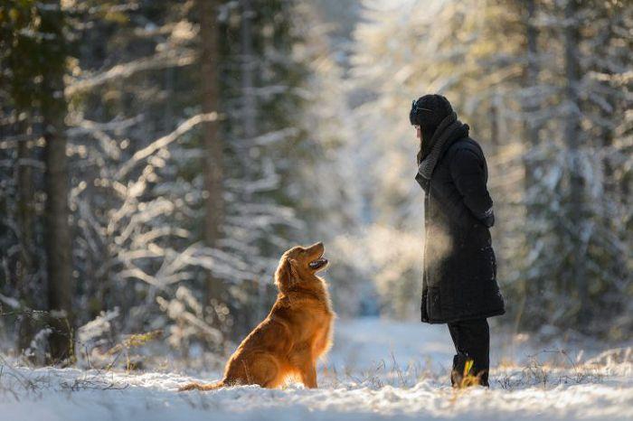 гуляет с собакой зимой