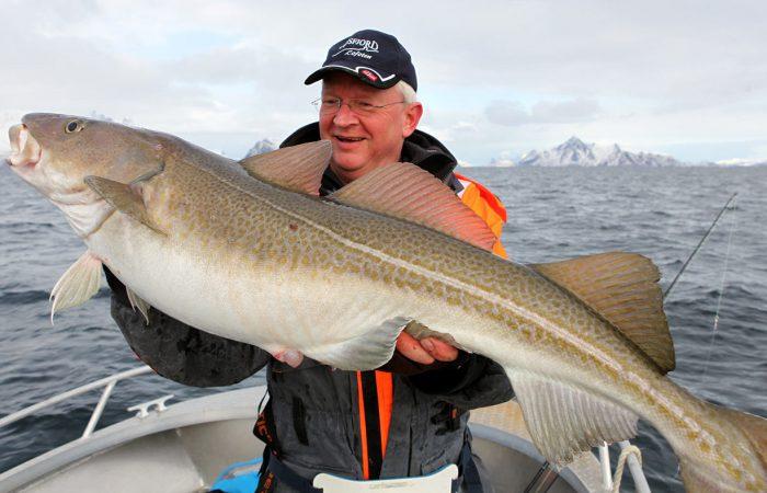 Северные промысловые рыбы