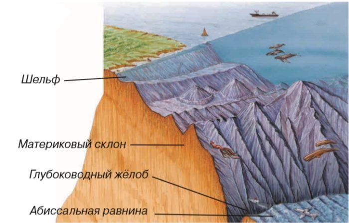 Строение морского дна