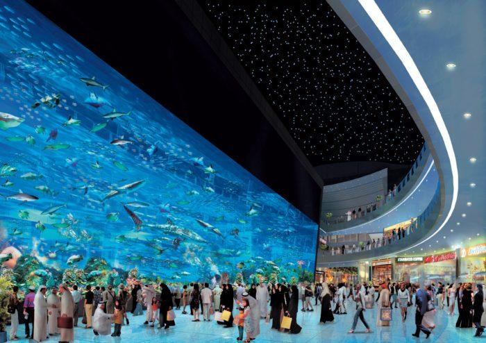 Огромная стеклянная панель в океанариуме Дубая