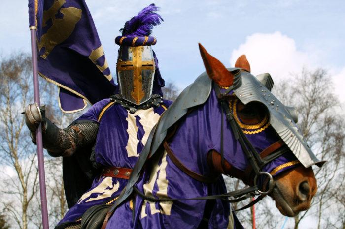 Рыцари и кони