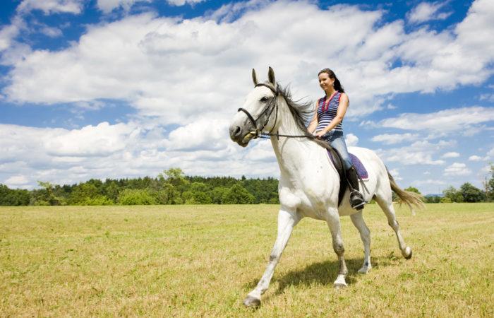 верхом на лошади