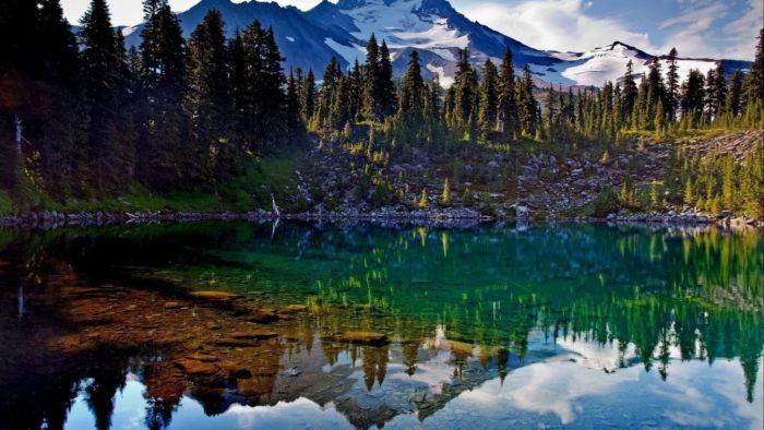 Лесное озеро с прозрачной водой