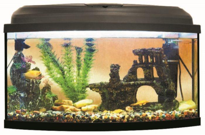 Неудачный пример оформления аквариума
