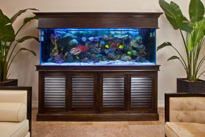 Современный дизайнерский аквариум