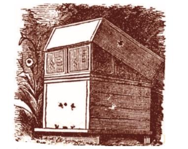 Рисунок одного из первых рамочных ульев