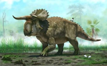 Травоядные динозавры