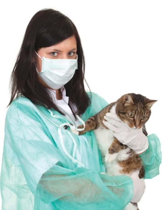 кошка больная