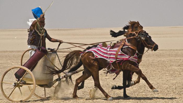 Лошадь в истории
