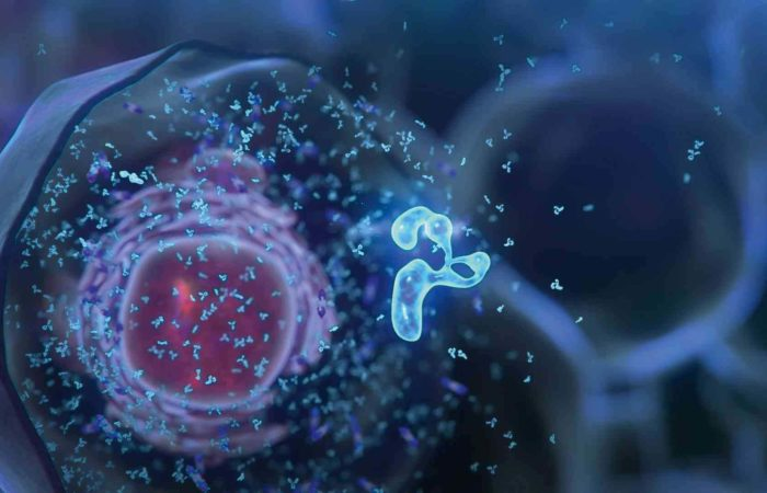 Клетка — основа жизни