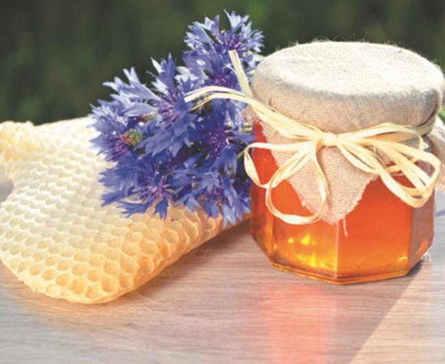 Продукты пчеловодства — мед и воск