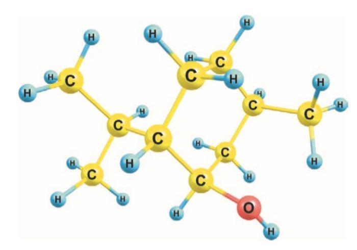 Органические вещества содержат углерод, водород и кислород